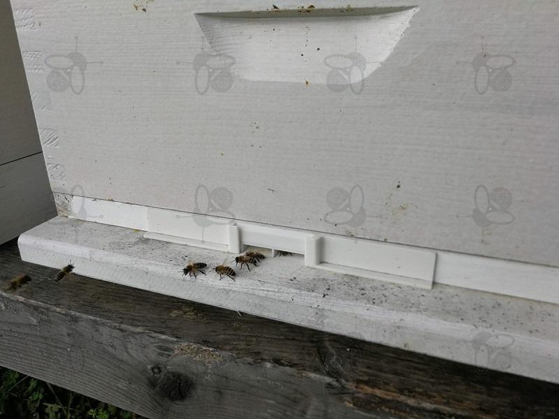 Čebelji rop